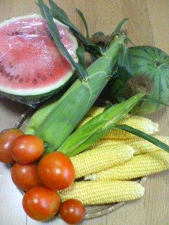 夏野菜(^o^)