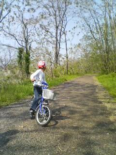 自転車(^o^)
