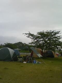 キャンプ2 (^o^)
