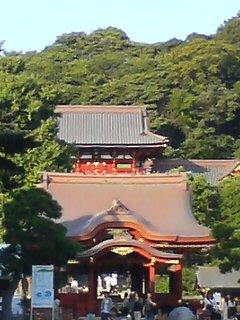 鎌倉八幡宮(^o^)