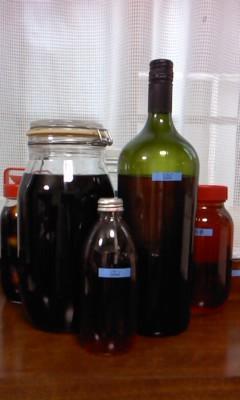 果実酒(^o^)
