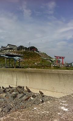 蕪島神社(^o^)