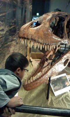 ティラノザウルス(^o^)