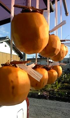 干し柿(^o^)