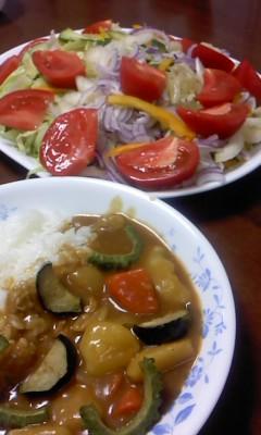 夏野菜カレー(^o^)